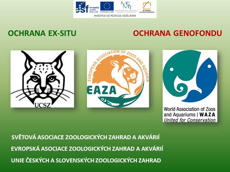 OCHRANA GENOFONDUOCHRANA EX-SITU Úmluva o mezinárodním obchodu s ohroženými druhy volně žijících živočichů a planě rostoucích rostlin (CITES), Washignton 1973 (ČR od roku 1993).