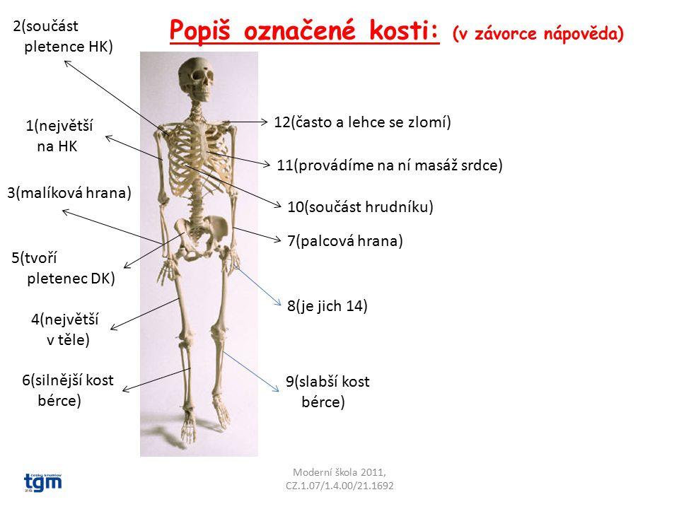 Popiš označené kosti: (v závorce nápověda) Moderní škola 2011, CZ.1.07/1.4.00/21.1692 1(největší na HK 2(součást pletence HK) 3(malíková hrana) 5(tvoř