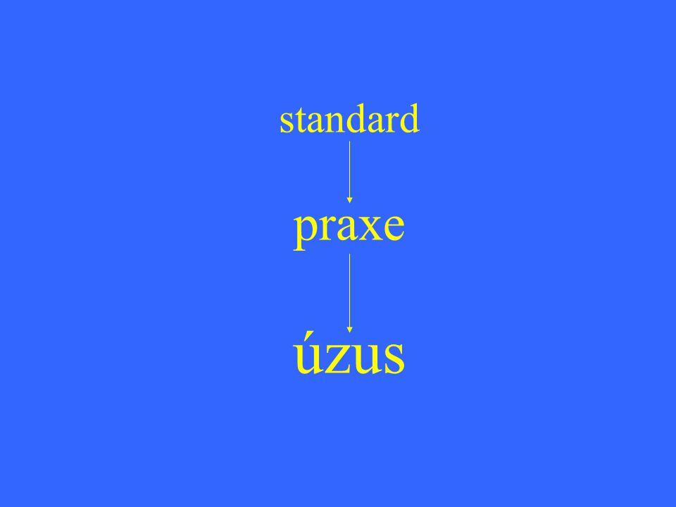 standard praxe úzus