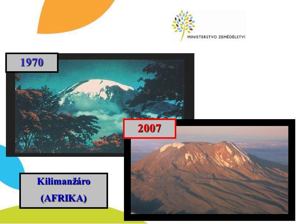 Kilimanžáro (AFRIKA) Kilimanžáro (AFRIKA)1970 2007