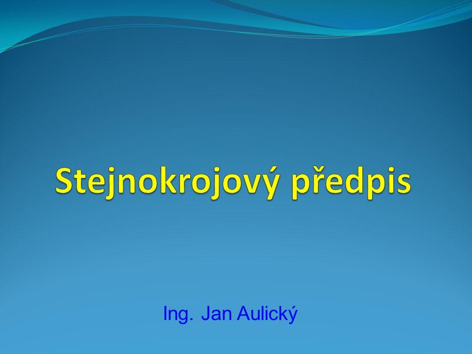 Ing. Jan Aulický