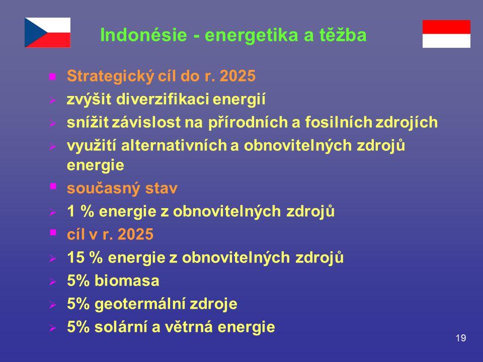 19 n Strategický cíl do r. 2025  zvýšit diverzifikaci energií  snížit závislost na přírodních a fosilních zdrojích  využití alternativních a obnovi
