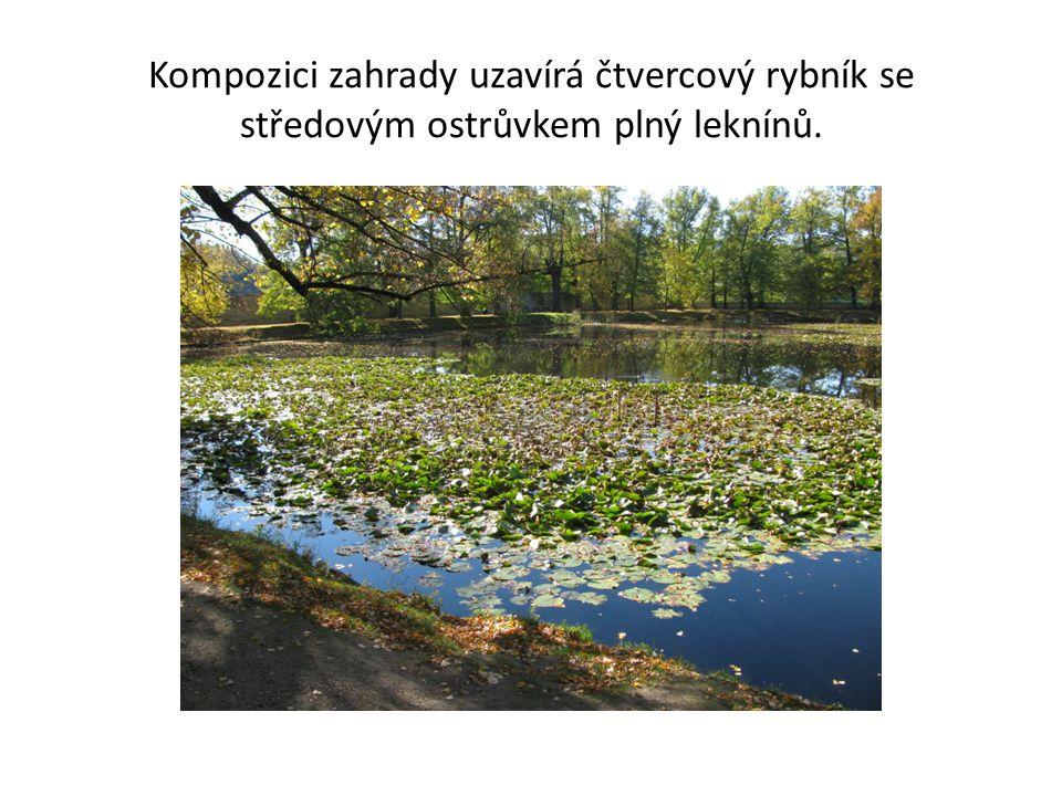 Kompozici zahrady uzavírá čtvercový rybník se středovým ostrůvkem plný leknínů.