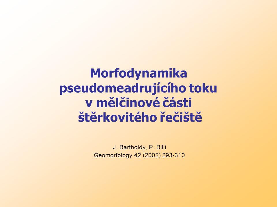 Morfodynamika pseudomeadrujícího toku v mělčinové části štěrkovitého řečiště J.