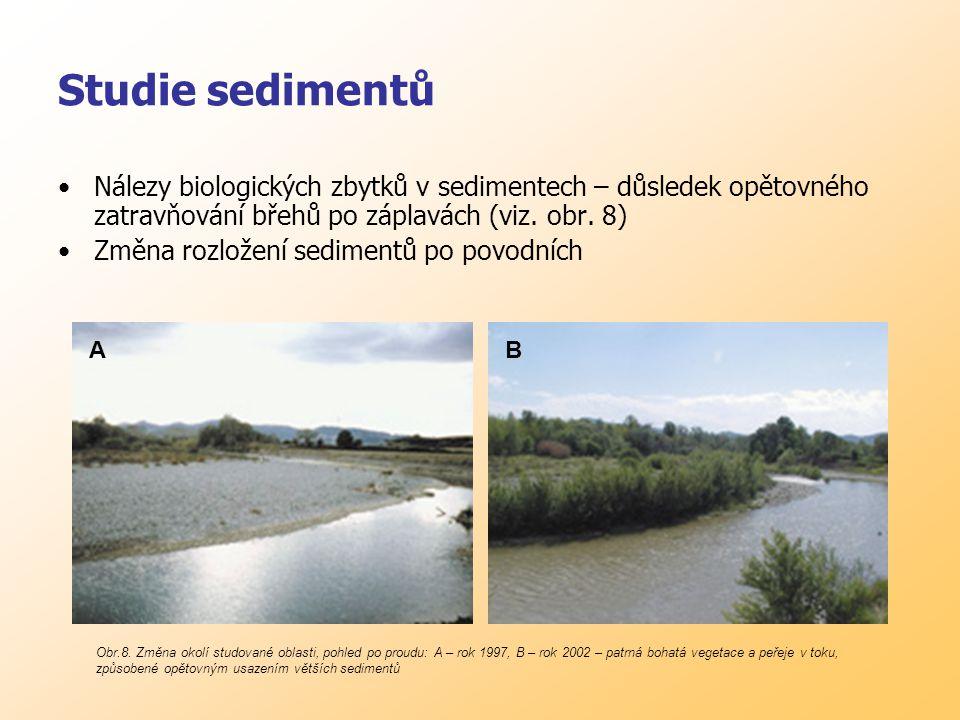 Studie sedimentů Nálezy biologických zbytků v sedimentech – důsledek opětovného zatravňování břehů po záplavách (viz.