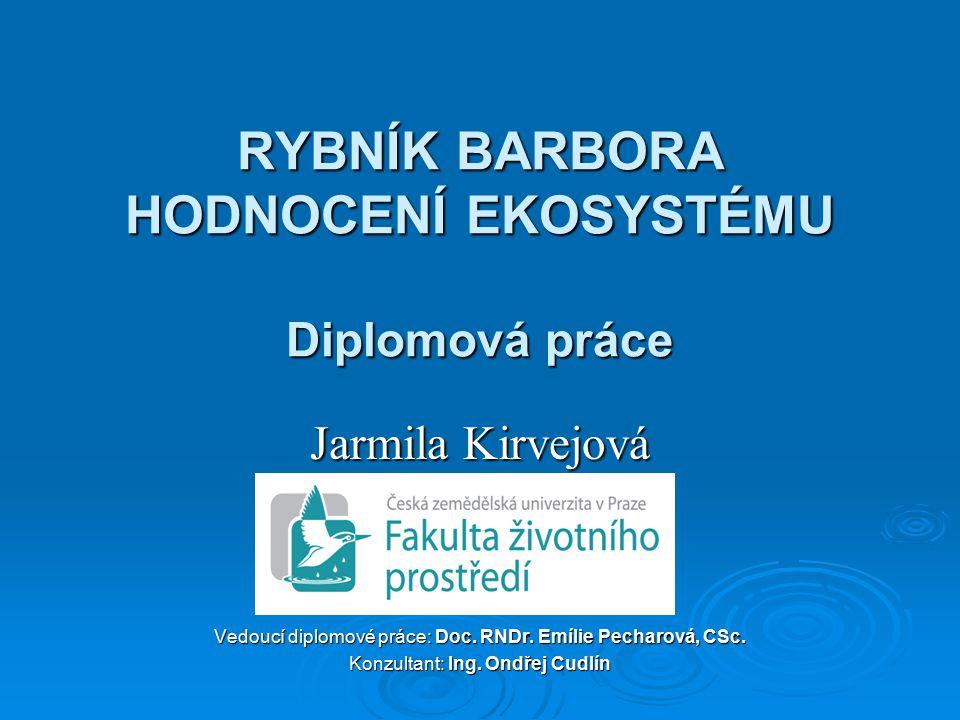 RYBNÍK BARBORA HODNOCENÍ EKOSYSTÉMU Diplomová práce Jarmila Kirvejová Vedoucí diplomové práce: Doc.