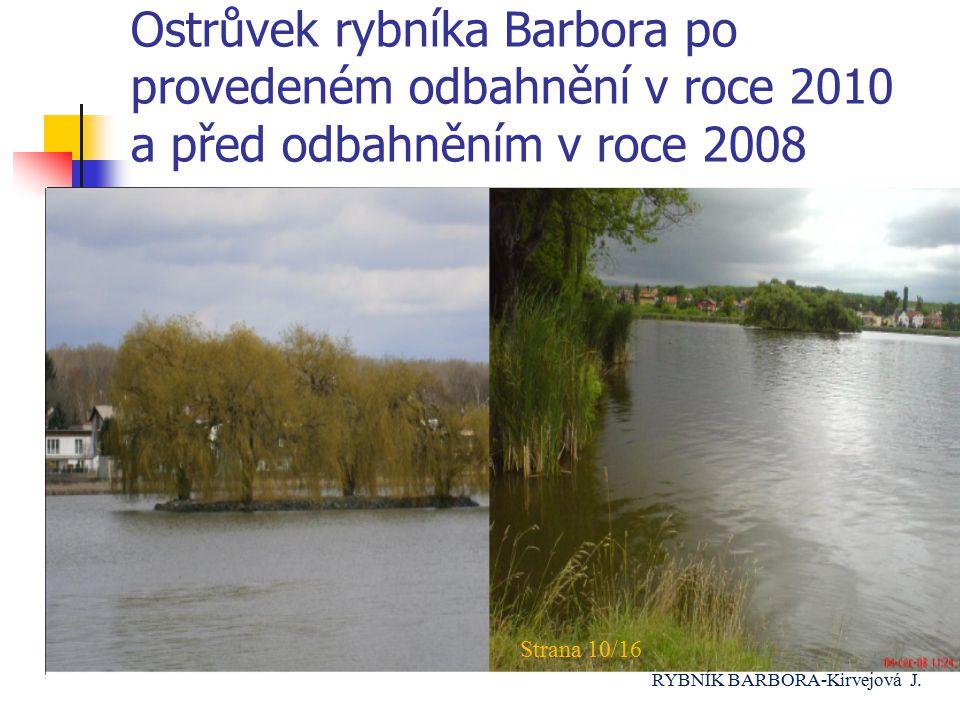 Ostrůvek rybníka Barbora po provedeném odbahnění v roce 2010 a před odbahněním v roce 2008 Strana 10/16 RYBNÍK BARBORA-Kirvejová J.