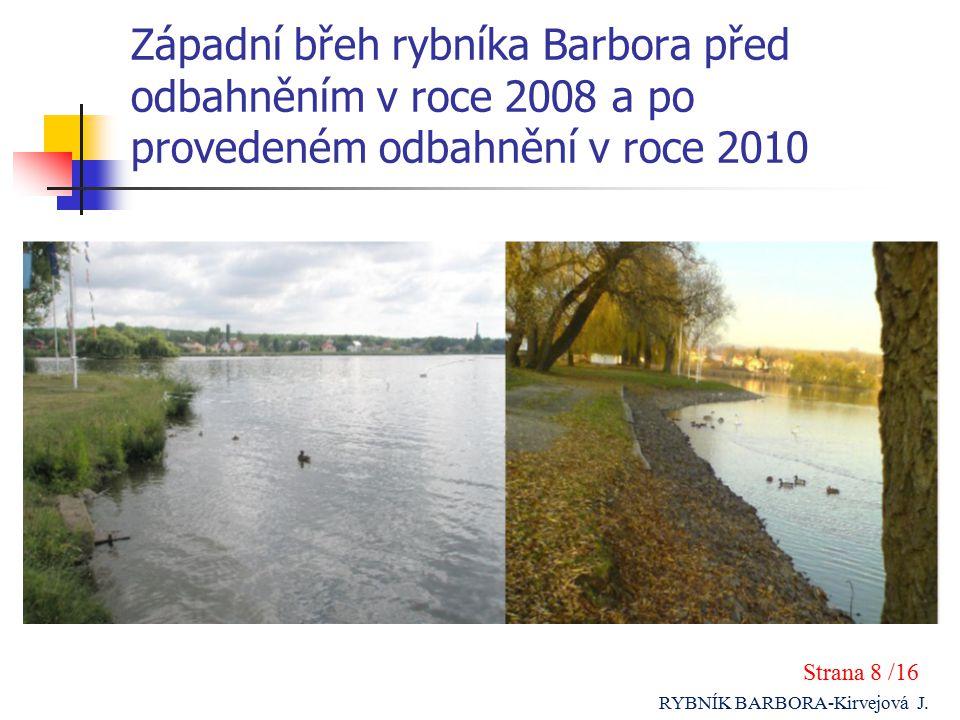 Západní břeh rybníka Barbora před odbahněním v roce 2008 a po provedeném odbahnění v roce 2010 Strana 8 /16 RYBNÍK BARBORA-Kirvejová J.