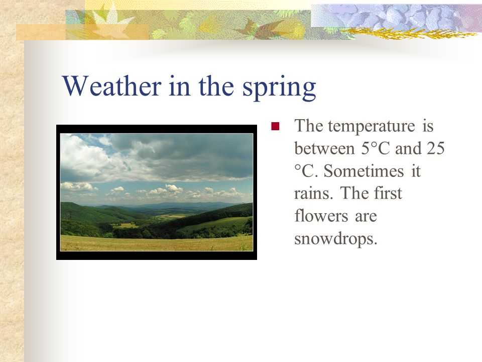 Weather in the spring The temperature is between 5°C and 25 °C. Sometimes it rains. The first flowers are snowdrops.