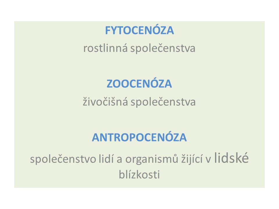 FYTOCENÓZA rostlinná společenstva ZOOCENÓZA živočišná společenstva ANTROPOCENÓZA společenstvo lidí a organismů žijící v lidské blízkosti