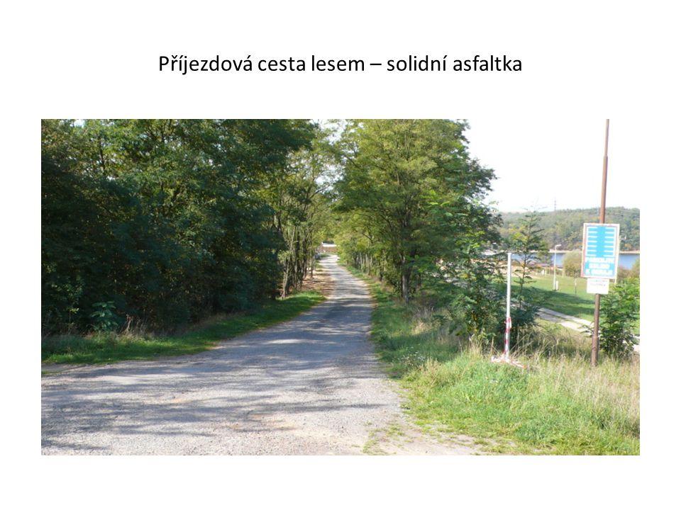 Příjezdová cesta lesem – solidní asfaltka