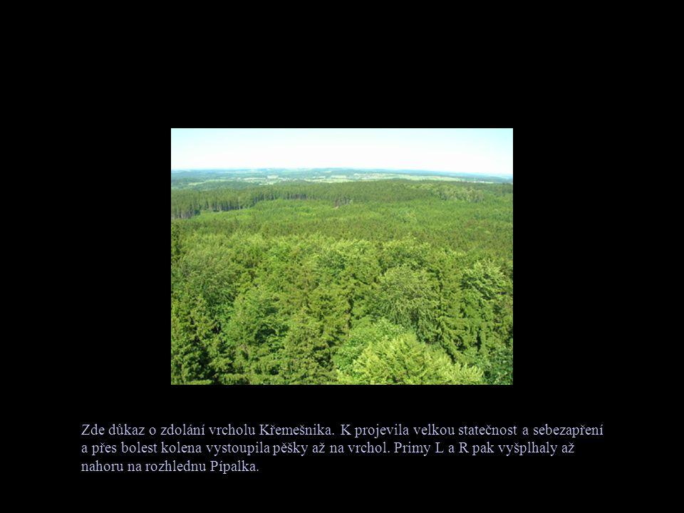Zde důkaz o zdolání vrcholu Křemešnika.