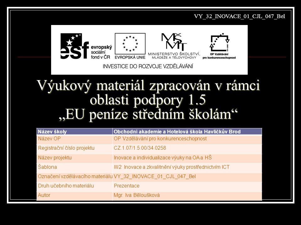 Vzdělávací obor, pro který je materiál určen Ekonomické lyceum PředmětLiterární výchova Ročník3.