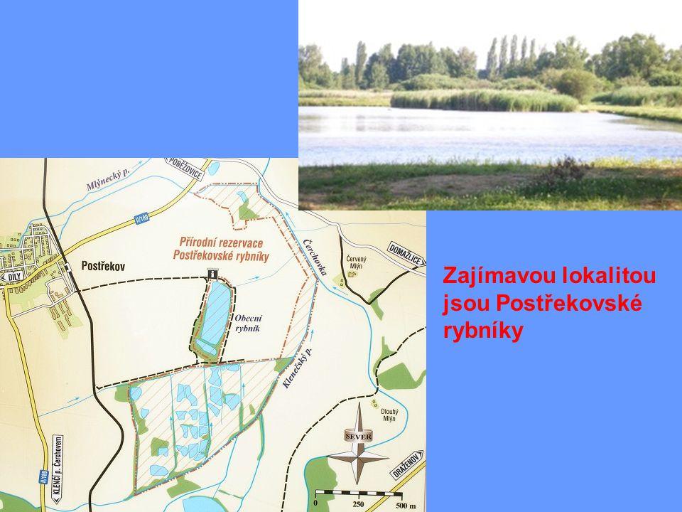 Zajímavou lokalitou jsou Postřekovské rybníky