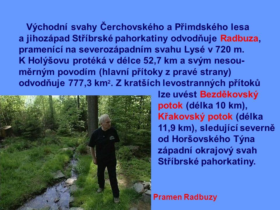 Východní svahy Čerchovského a Přimdského lesa a jihozápad Stříbrské pahorkatiny odvodňuje Radbuza, pramenící na severozápadním svahu Lysé v 720 m.