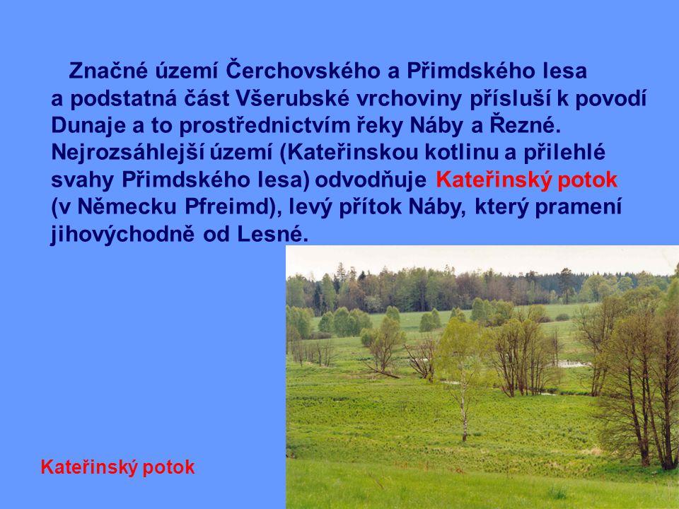 Značné území Čerchovského a Přimdského lesa a podstatná část Všerubské vrchoviny přísluší k povodí Dunaje a to prostřednictvím řeky Náby a Řezné.