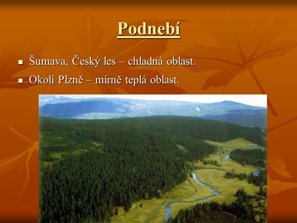 Podnebí Šumava, Český les – chladná oblast. Šumava, Český les – chladná oblast. Okolí Plzně – mírně teplá oblast. Okolí Plzně – mírně teplá oblast.