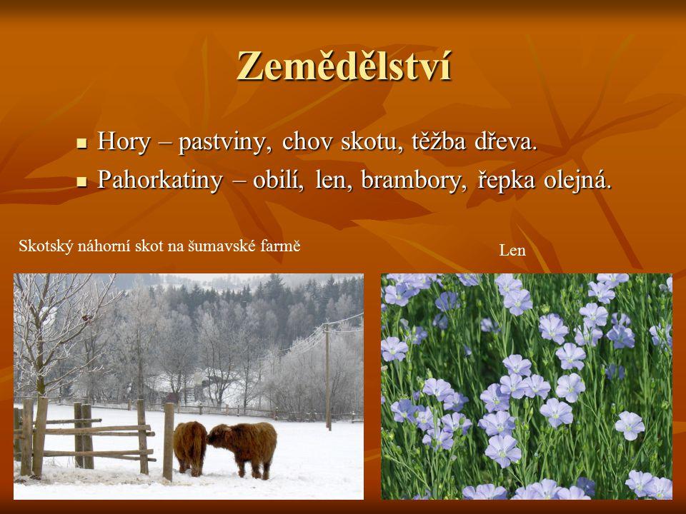Zemědělství Hory – pastviny, chov skotu, těžba dřeva. Hory – pastviny, chov skotu, těžba dřeva. Pahorkatiny – obilí, len, brambory, řepka olejná. Paho