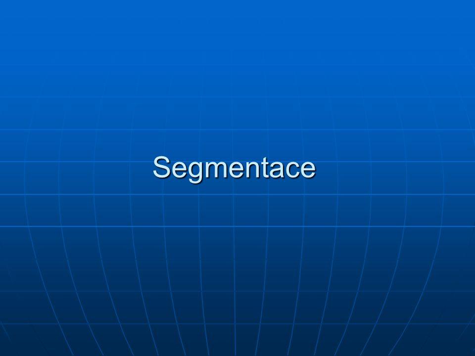 Segmentace