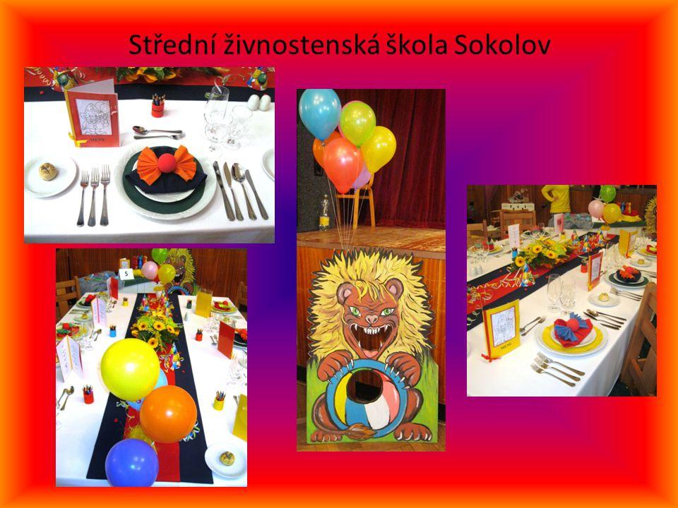 Střední živnostenská škola Sokolov