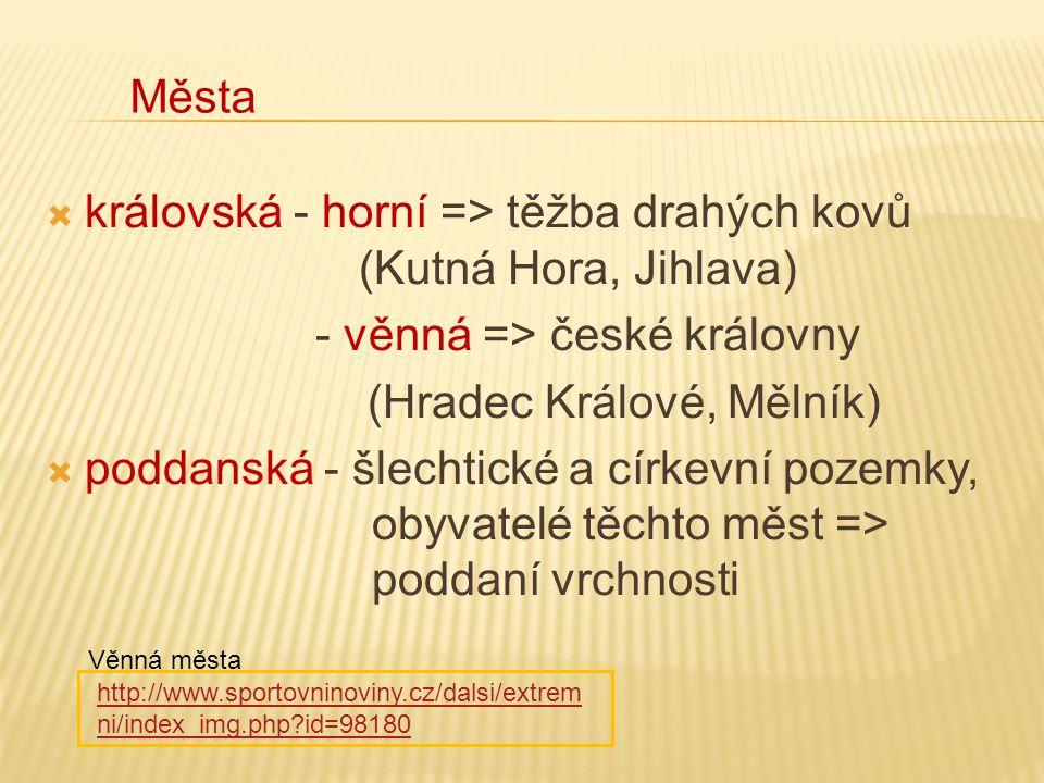  královská - horní => těžba drahých kovů (Kutná Hora, Jihlava) - věnná => české královny (Hradec Králové, Mělník)  poddanská - šlechtické a církevní