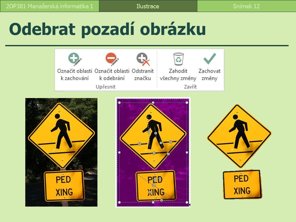 Odebrat pozadí obrázku IlustraceSnímek 122OP381 Manažerská informatika 1