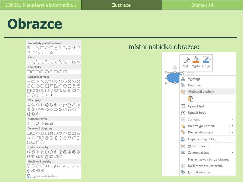 Obrazce Ilustrace místní nabídka obrazce: Snímek 142OP381 Manažerská informatika 1