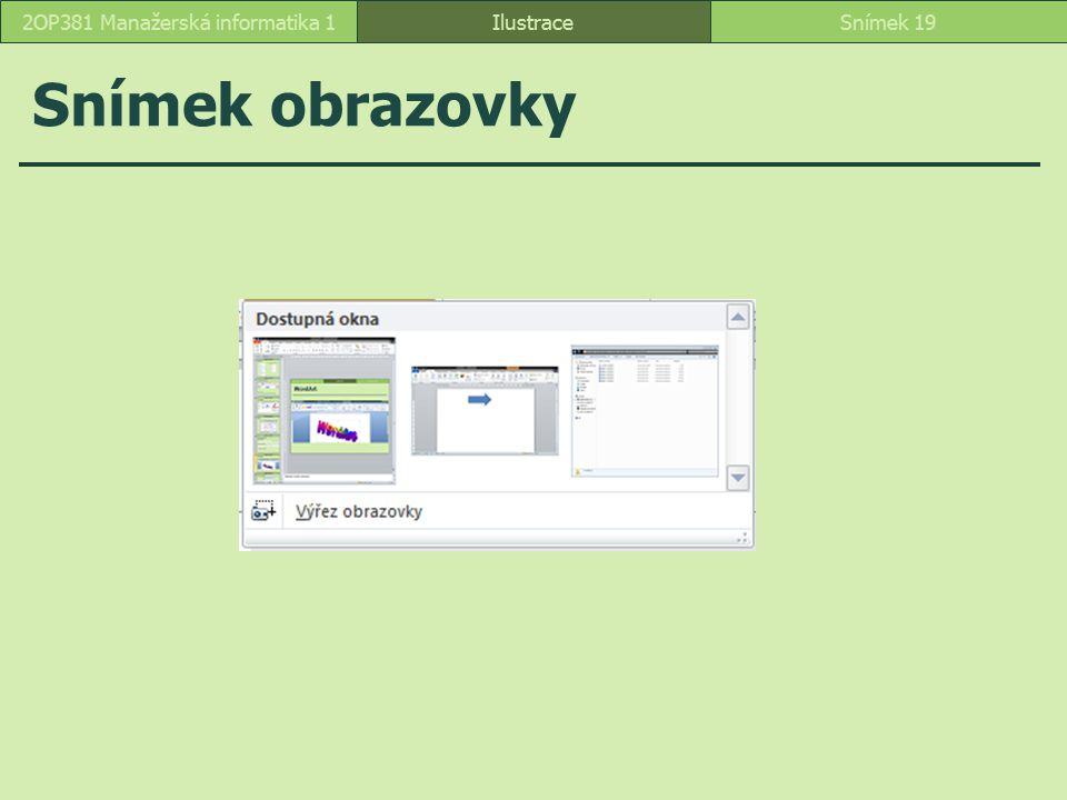 Snímek obrazovky IlustraceSnímek 192OP381 Manažerská informatika 1