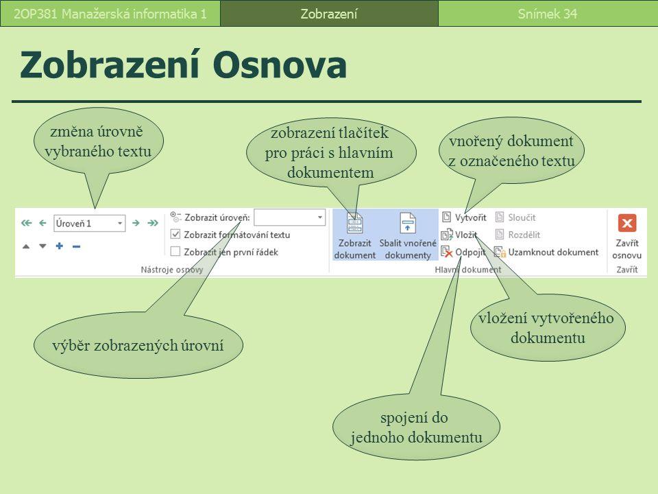 Zobrazení Osnova ZobrazeníSnímek 342OP381 Manažerská informatika 1 změna úrovně vybraného textu výběr zobrazených úrovní zobrazení tlačítek pro práci