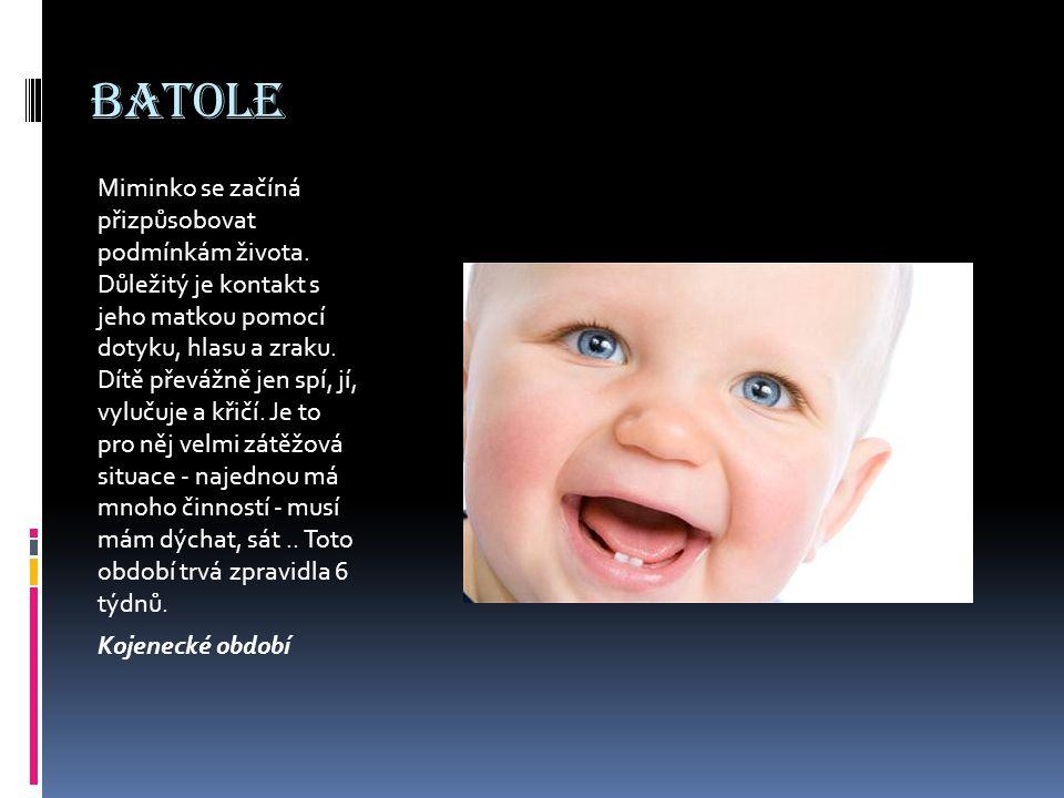 P ř edškolák Fáze prenatálního vývoje zahrnuje dobu od početí po narození dítěte a trvá přibližně 40 týdnů.