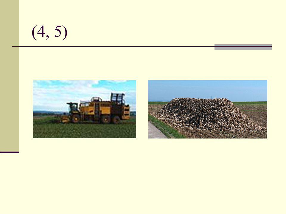 Využití : výroba cukru, cukrovarnictví výroba lihu, lihovarnictví krmivo pro dobytek biopalivo pro automobily