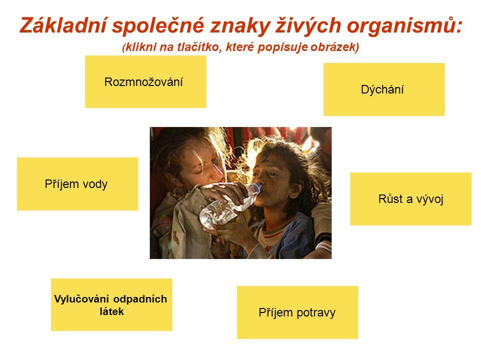 Základní společné znaky živých organismů: ( klikni na tlačítko, které popisuje obrázek) Příjem potravy Rozmnožování Vylučování odpadních látek Růst a