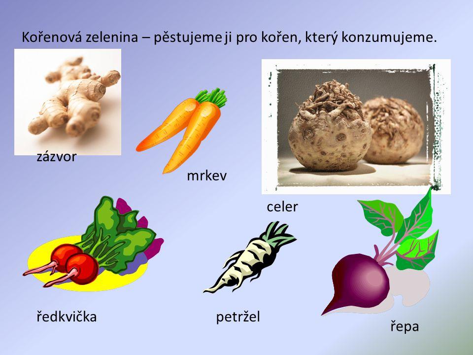 Kořenová zelenina – pěstujeme ji pro kořen, který konzumujeme. zázvor mrkev celer ředkvičkapetržel řepa