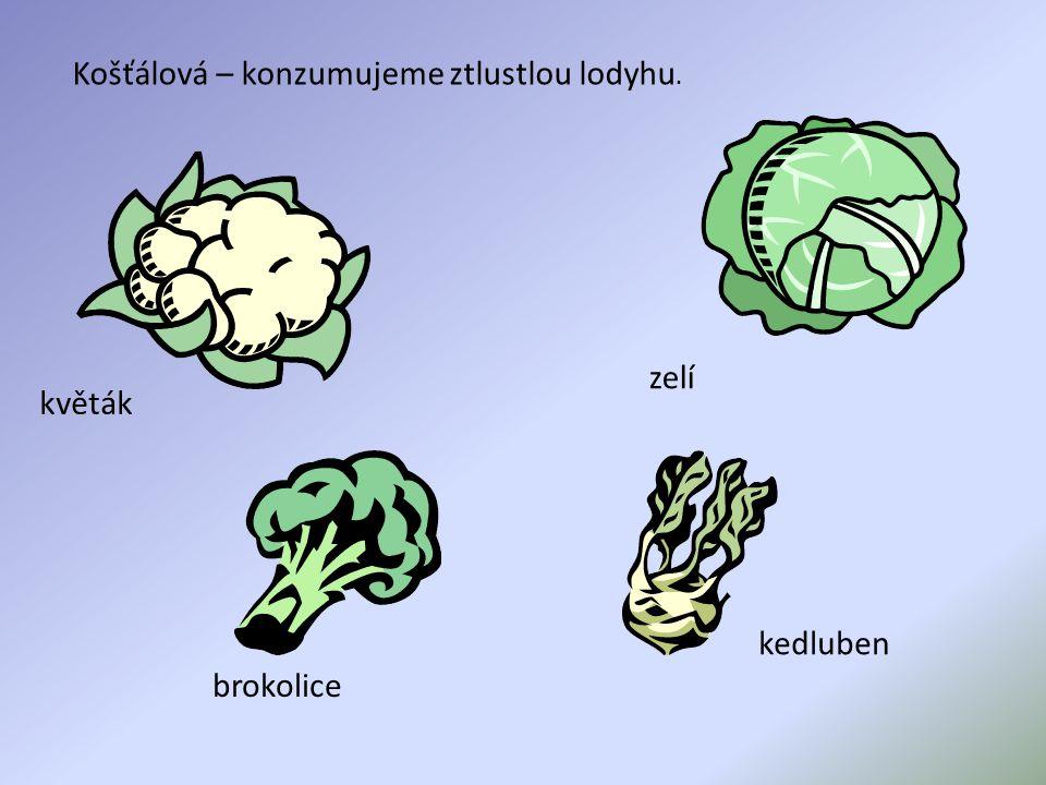 Košťálová – konzumujeme ztlustlou lodyhu. květák kedluben brokolice zelí