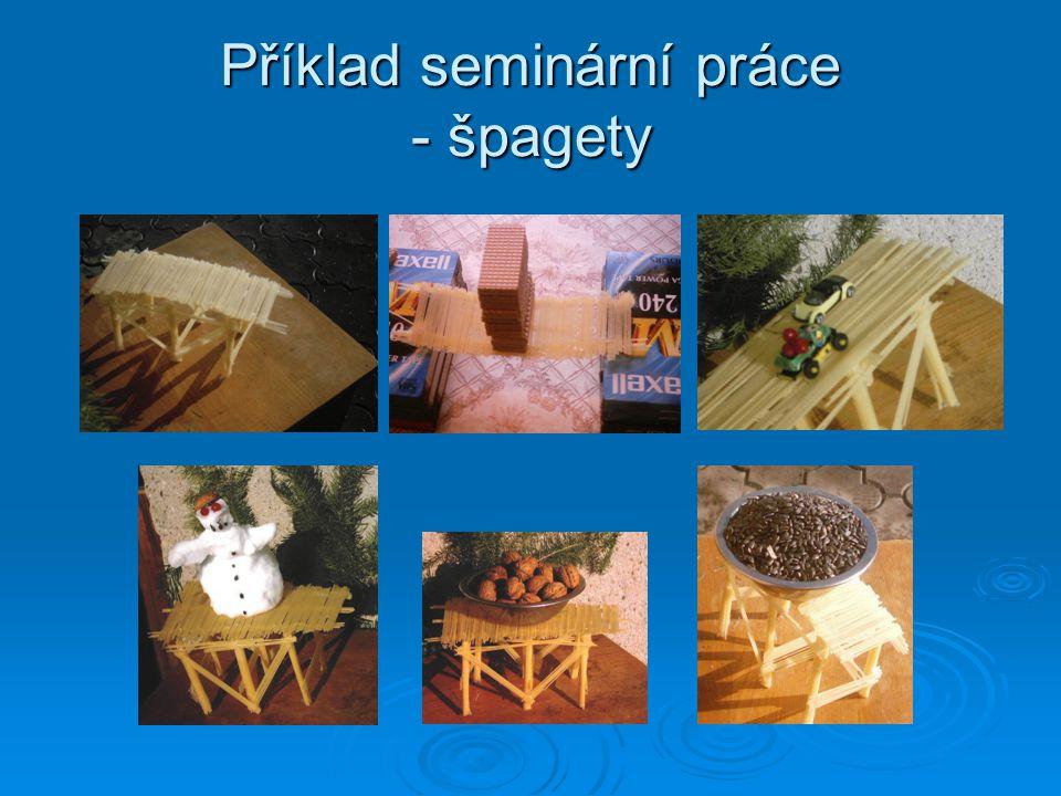 Příklad seminární práce - špagety