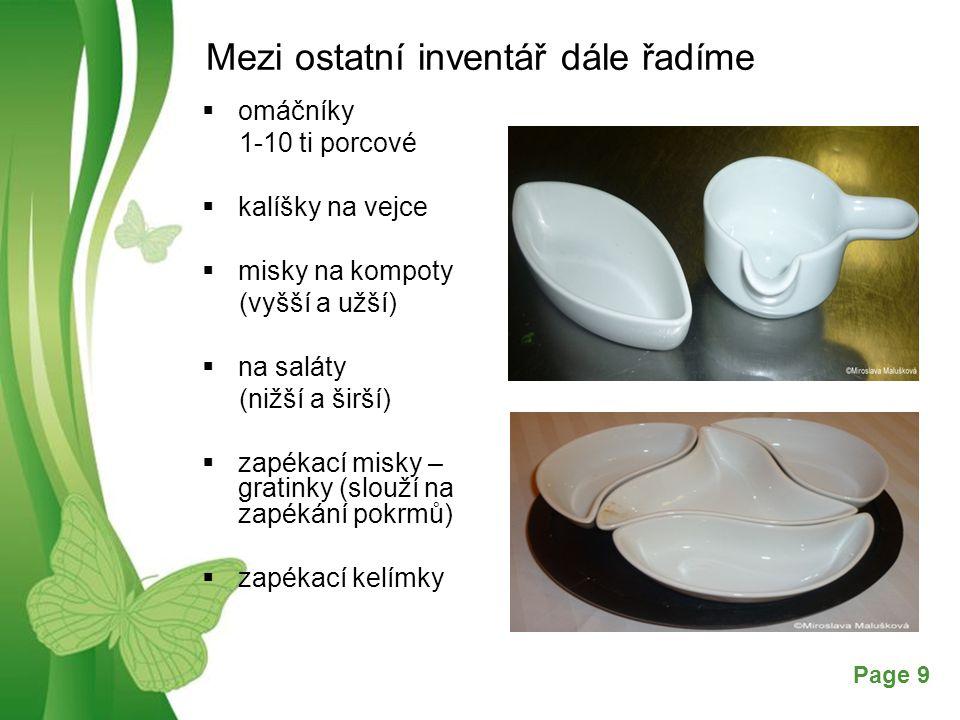 Free Powerpoint TemplatesPage 10 POUŽITÁ LITERATURA SALAČ, Gustav.