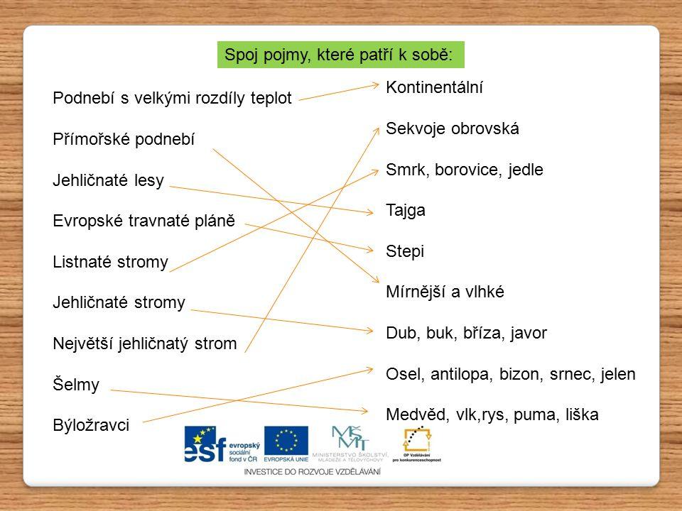 Podnebí s velkými rozdíly teplot Přímořské podnebí Jehličnaté lesy Evropské travnaté pláně Listnaté stromy Jehličnaté stromy Největší jehličnatý strom