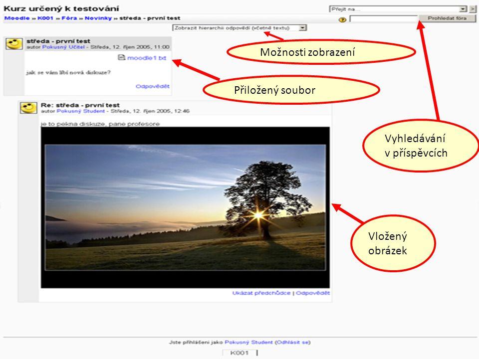 Přiložený soubor Vložený obrázek Možnosti zobrazení Vyhledávání v příspěvcích