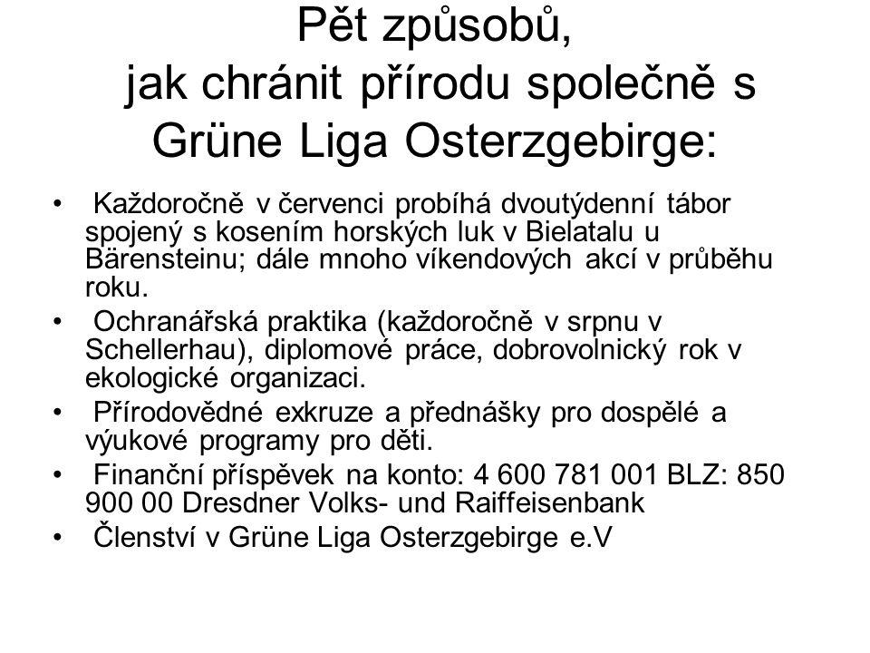 Pět způsobů, jak chránit přírodu společně s Grüne Liga Osterzgebirge: Každoročně v červenci probíhá dvoutýdenní tábor spojený s kosením horských luk v