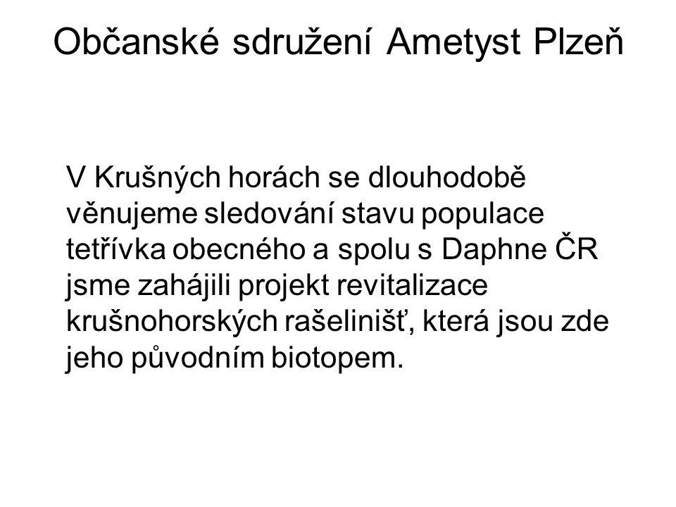 Občanské sdružení Ametyst Plzeň V Krušných horách se dlouhodobě věnujeme sledování stavu populace tetřívka obecného a spolu s Daphne ČR jsme zahájili