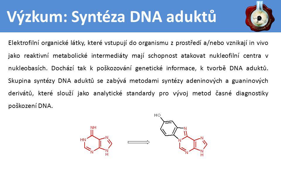 Výzkum: Syntéza DNA aduktů Elektrofilní organické látky, které vstupují do organismu z prostředí a/nebo vznikají in vivo jako reaktivní metabolické intermediáty mají schopnost atakovat nukleofilní centra v nukleobasích.