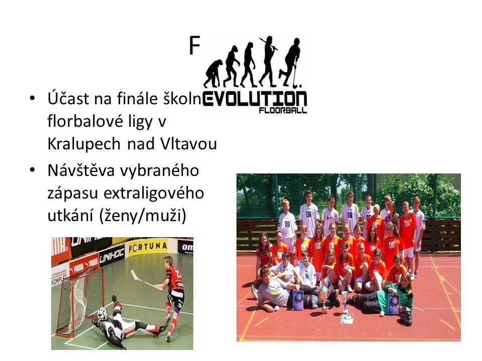 FLORBAL Účast na finále školní florbalové ligy v Kralupech nad Vltavou Návštěva vybraného zápasu extraligového utkání (ženy/muži)
