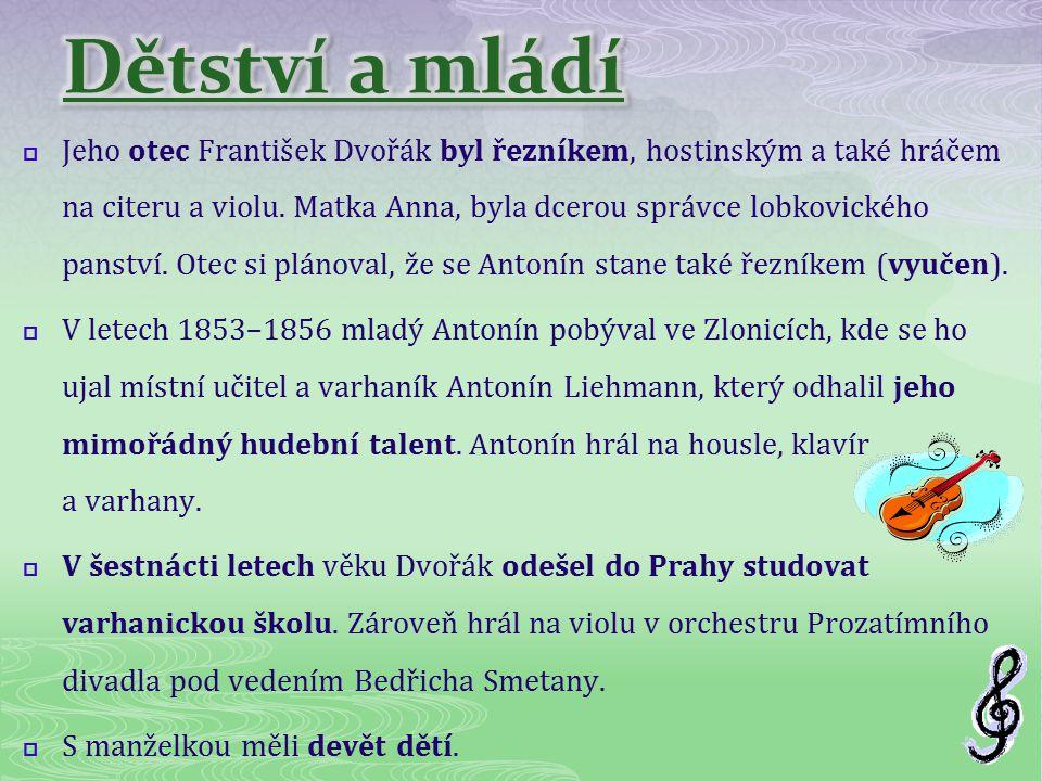  Jeho otec František Dvořák byl řezníkem, hostinským a také hráčem na citeru a violu. Matka Anna, byla dcerou správce lobkovického panství. Otec si p