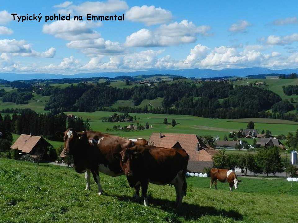 Büren an der Aare je v regionu Berner Seeland
