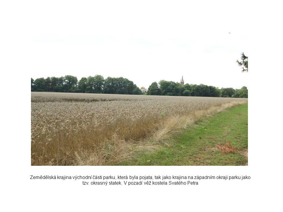 Zemědělská krajina východní části parku, která byla pojata, tak jako krajina na západním okraji parku jako tzv.