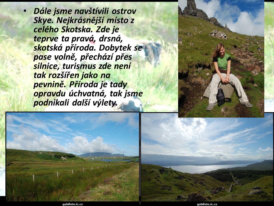 Dále jsme navštívili ostrov Skye. Nejkrásnější místo z celého Skotska. Zde je teprve ta pravá, drsná, skotská příroda. Dobytek se pase volně, přechází