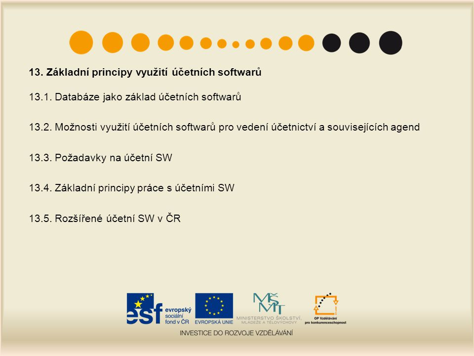 13. Základní principy využití účetních softwarů 13.1. Databáze jako základ účetních softwarů 13.2. Možnosti využití účetních softwarů pro vedení účetn