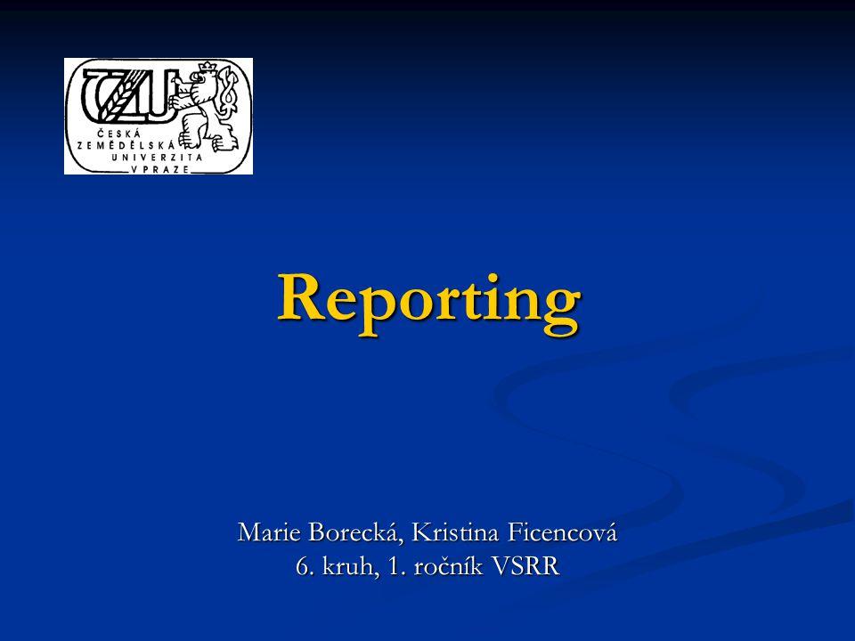 Reporting Marie Borecká, Kristina Ficencová 6. kruh, 1. ročník VSRR