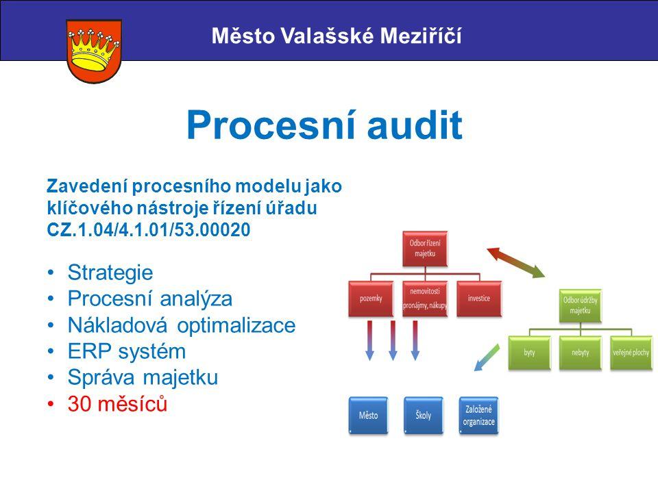 Město Valašské Meziříčí Procesní audit Zavedení procesního modelu jako klíčového nástroje řízení úřadu CZ.1.04/4.1.01/53.00020 Strategie Procesní anal