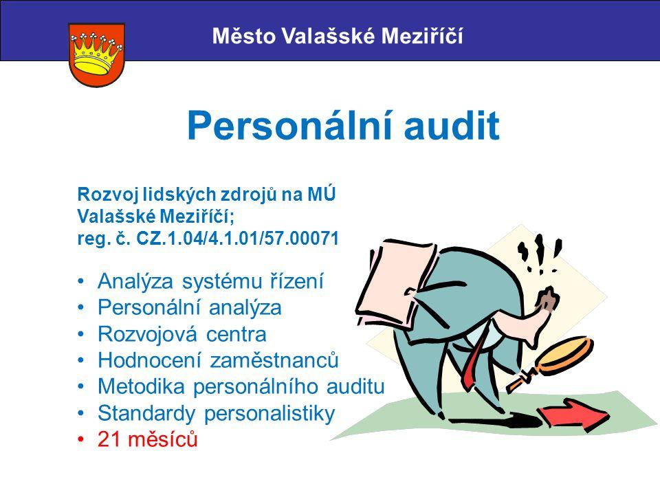 Město Valašské Meziříčí Personální audit Rozvoj lidských zdrojů na MÚ Valašské Meziříčí; reg. č. CZ.1.04/4.1.01/57.00071 Analýza systému řízení Person